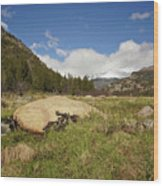 Rocky Mountain Valley Wood Print