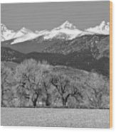 Rocky Mountain View Bw Wood Print