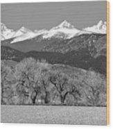 Rocky Mountain View Bw Wood Print
