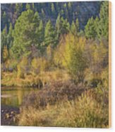 Rocky Mountains Autumn Wood Print