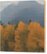 Rocky Mountains Colorado Autumn  Wood Print