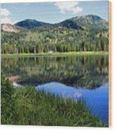 Rocky Mountains Majesty Wood Print