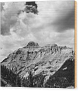 Rocky Mountains Of Colorado  Black And White Wood Print