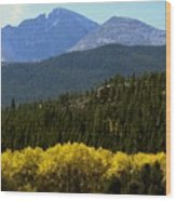 Rocky Mts Mtn M 209 Wood Print
