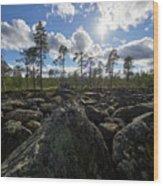 Rocky Offroad. Boulderfield Wood Print