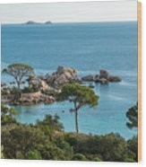 Rocky Outcrop And Coastline Near Palombaggia In Corsica Wood Print