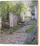 Rocky Pathway Wood Print