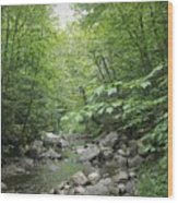 Rocky River In Green Wood Print