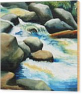 Rocky River Run Wood Print