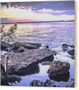 Rocky River Shore Wood Print