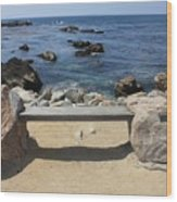 Rocky Seaside Bench Wood Print