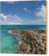 Rocky Shoreline On The Beach At Atlantis Resort Wood Print