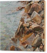Rocky Shoreline Wood Print