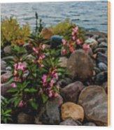 Rocky Shores Of Lake St. Clair- Michigan Wood Print