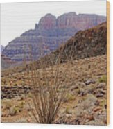 Rocky Slope Grand Canyon Wood Print