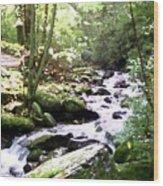 Rocky Stream 1 Wood Print