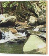 Rocky Stream 5 Wood Print