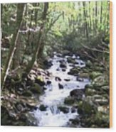 Rocky Stream 6 Wood Print