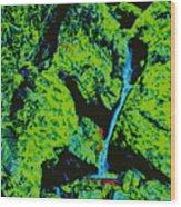 Rocky Support D5b Wood Print