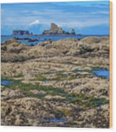 Rocky Washington Coast Of The Pacific Wood Print