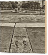 Rocky's Footprints Wood Print by Jack Paolini