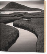 Northton Saltmarsh Wood Print