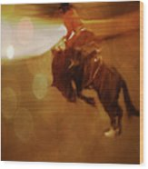 Rodeo Abstract Wood Print