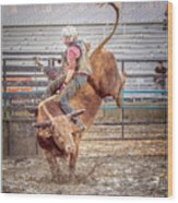 Rodeo Cowboy Wood Print