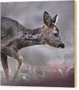 Roe Deer Wood Print