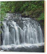 Rolley Lake Falls Dry Brushed Wood Print