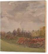 Rolling Fields In The Fall Wood Print