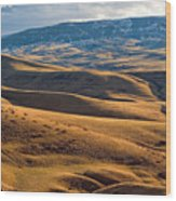 Rolling Foothills And The Bighorn Mountains Wood Print