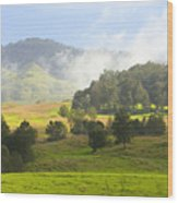 Rolling Green Hills Wood Print