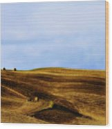 Rolling Hills Of Hay Wood Print