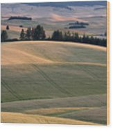 Rolling Hills Of The Palouse Wood Print