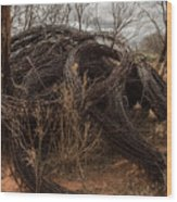 Rolls Of Barbed Wire Wood Print