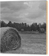Rolls Of Hay Wood Print by Southern Photo