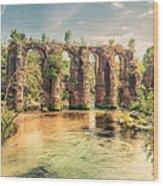 Roman Aqeduct I Wood Print