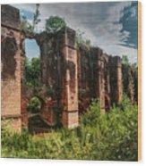 Roman Aqueduct II Wood Print