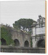 Roman Aqueduct Wood Print