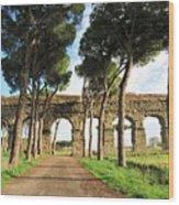 Roman Aqueducts Wood Print