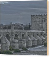 Roman Bridge In Cordoba II Wood Print