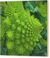 Roman Cauliflower Wood Print