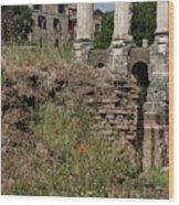 Roman Poppy Wood Print