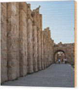 Roman Ruins At Jerash, Jordan  Wood Print
