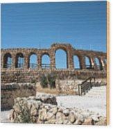 Roman Ruins Wood Print