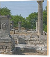 Roman Ruins Near St. Remy In Provence Wood Print