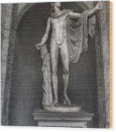 Roman Statue Wood Print