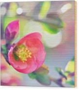 Romancing Spring I Wood Print