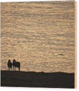 Romancing The Sheep Wood Print